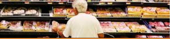 Uji Deteksi Logam Pada Makanan